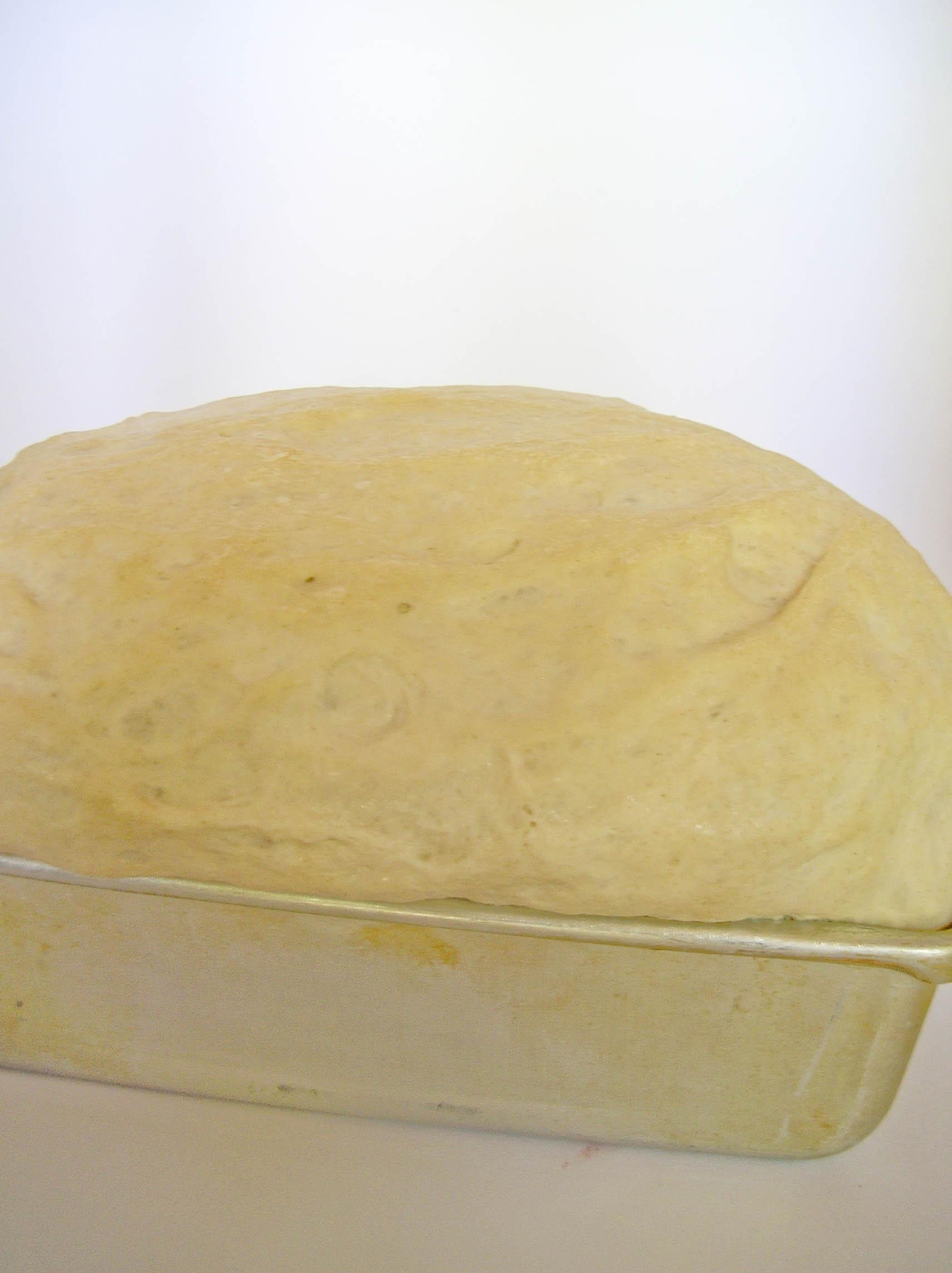bake1